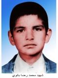 محمدرضا بانوی خانکوک