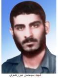سید حسن میررضوی