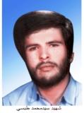 سید محمد طبسی