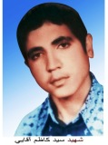 سید کاظم آقایی