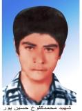 محمد کلوخ حسین پور