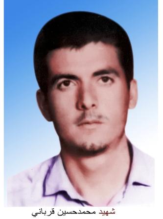 محمد حسین قربانی