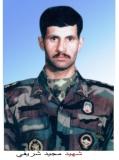 مجید شریفی