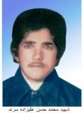 محمد حسن علیزاده