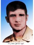 اسماعیل محمدزاده بهمدی