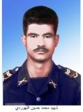 محمدحسین اله وردی