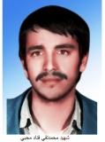 محمدتقی قناد محبی