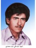 سیدعلی سید محمدی